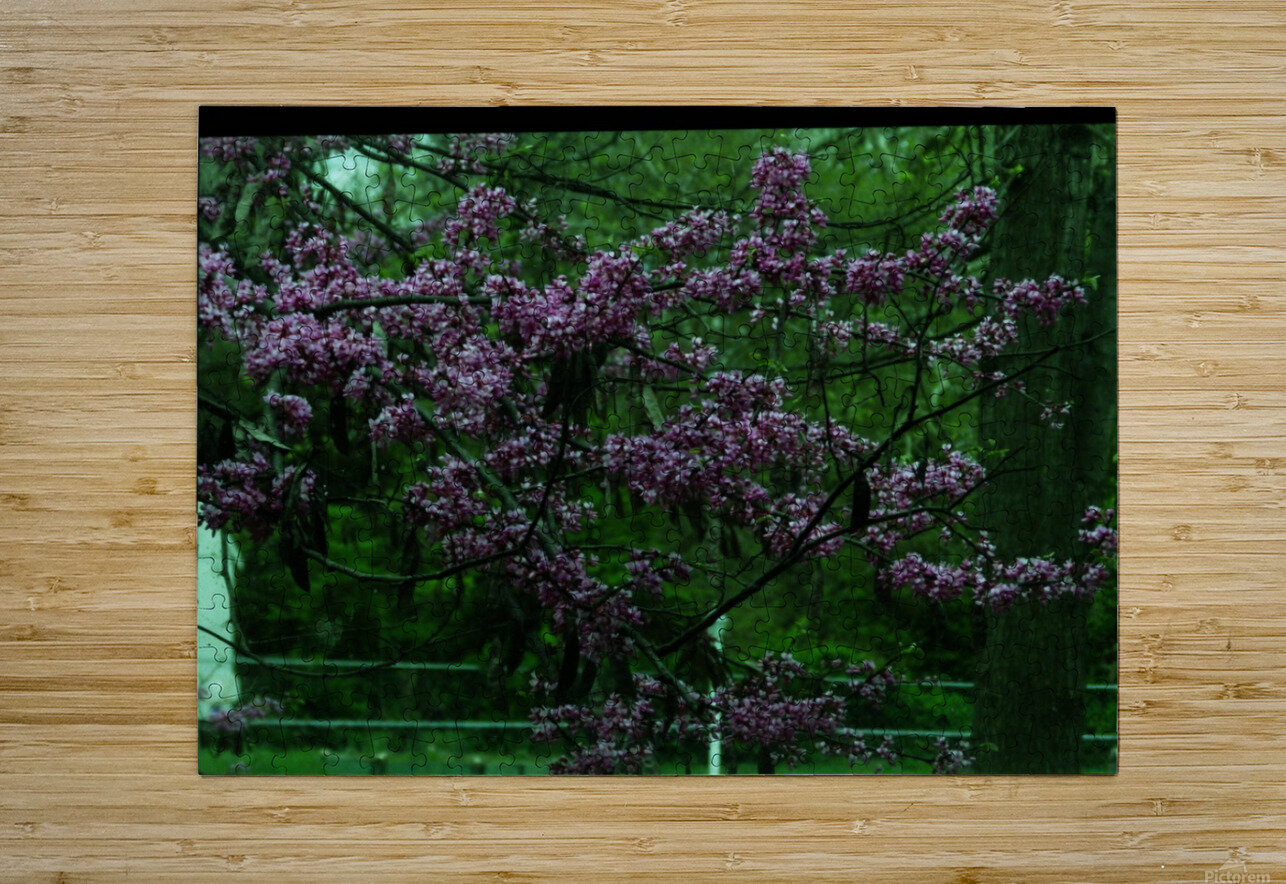sofn-094A1D2D  HD Metal print with Floating Frame on Back