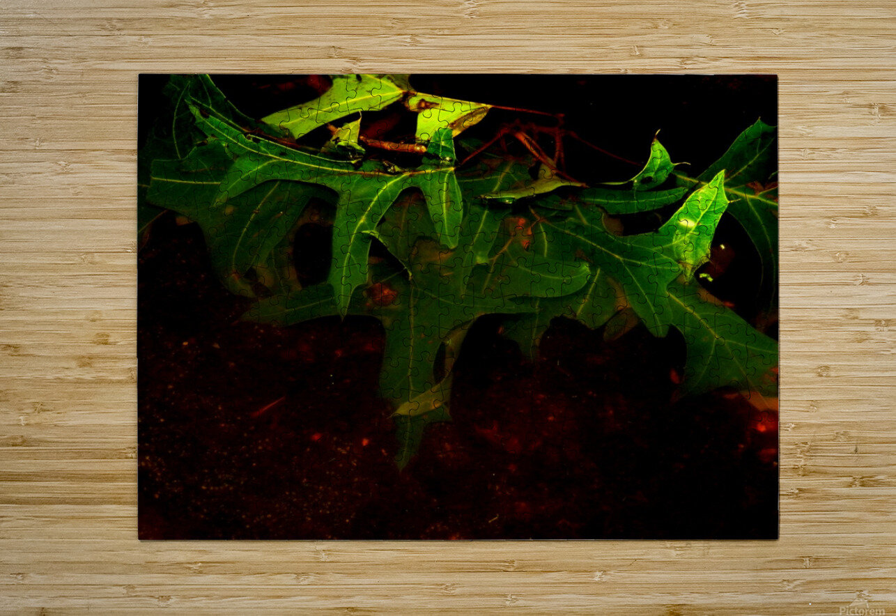 sofn-CA35DBE6  HD Metal print with Floating Frame on Back