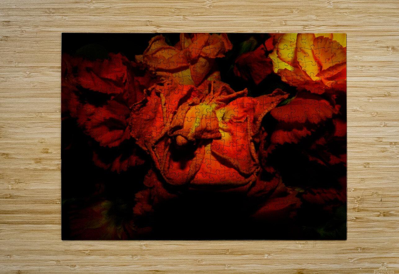 sofn-892B7068  HD Metal print with Floating Frame on Back