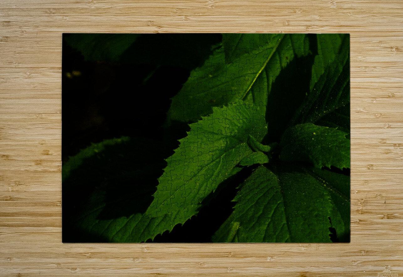 sofn-B03175AE  HD Metal print with Floating Frame on Back