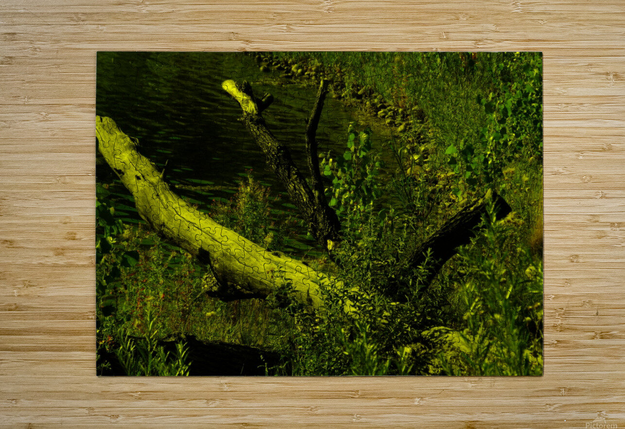 sofn-D8D8949C  HD Metal print with Floating Frame on Back