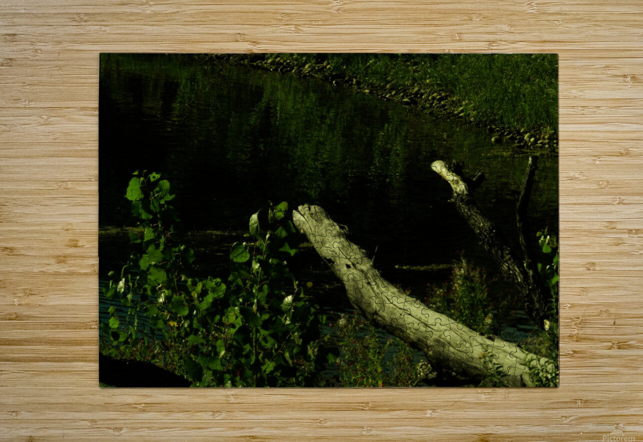 sofn-DC7396D7  HD Metal print with Floating Frame on Back