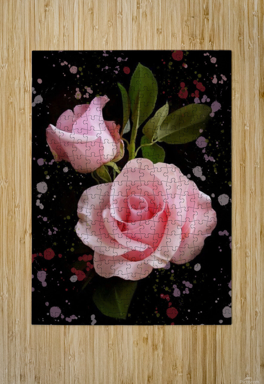 Pink Roses  HD Metal print with Floating Frame on Back