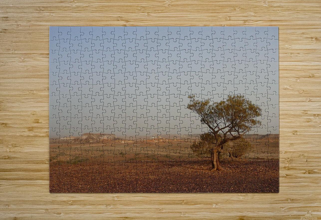 The breakaways South Australia  Impression métal HD avec cadre flottant sur le dos