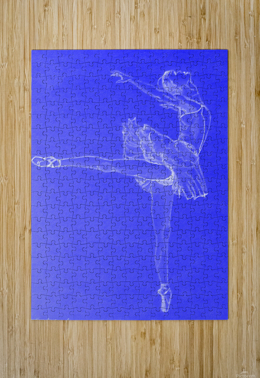 Celestial Ballerina  HD Metal print with Floating Frame on Back