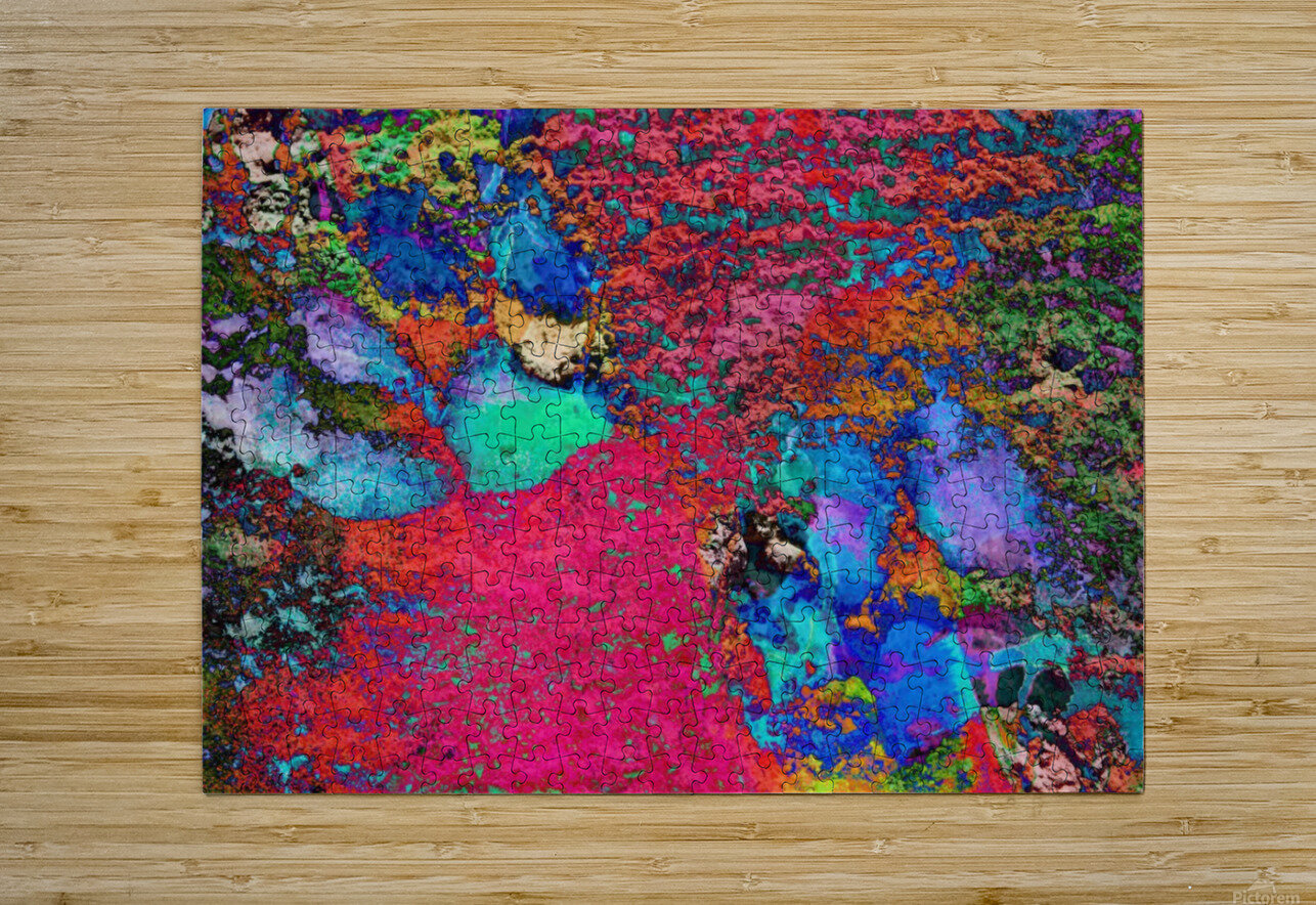 Paw Prints Colour Explosion  HD Metal print with Floating Frame on Back