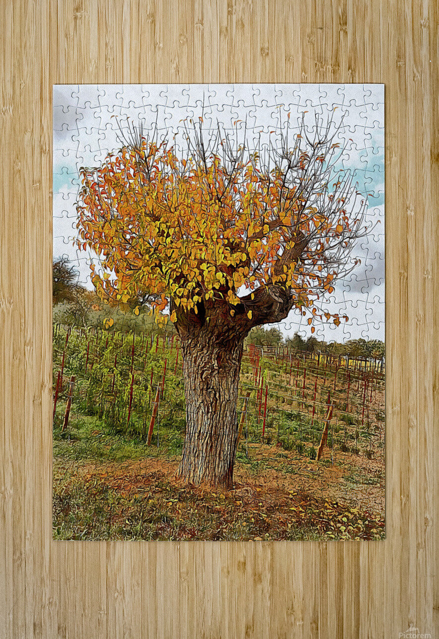 The Autumn Guardian  HD Metal print with Floating Frame on Back