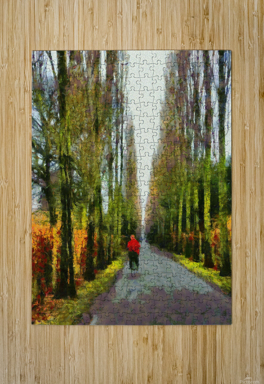 Cemetry Road  HD Metal print with Floating Frame on Back