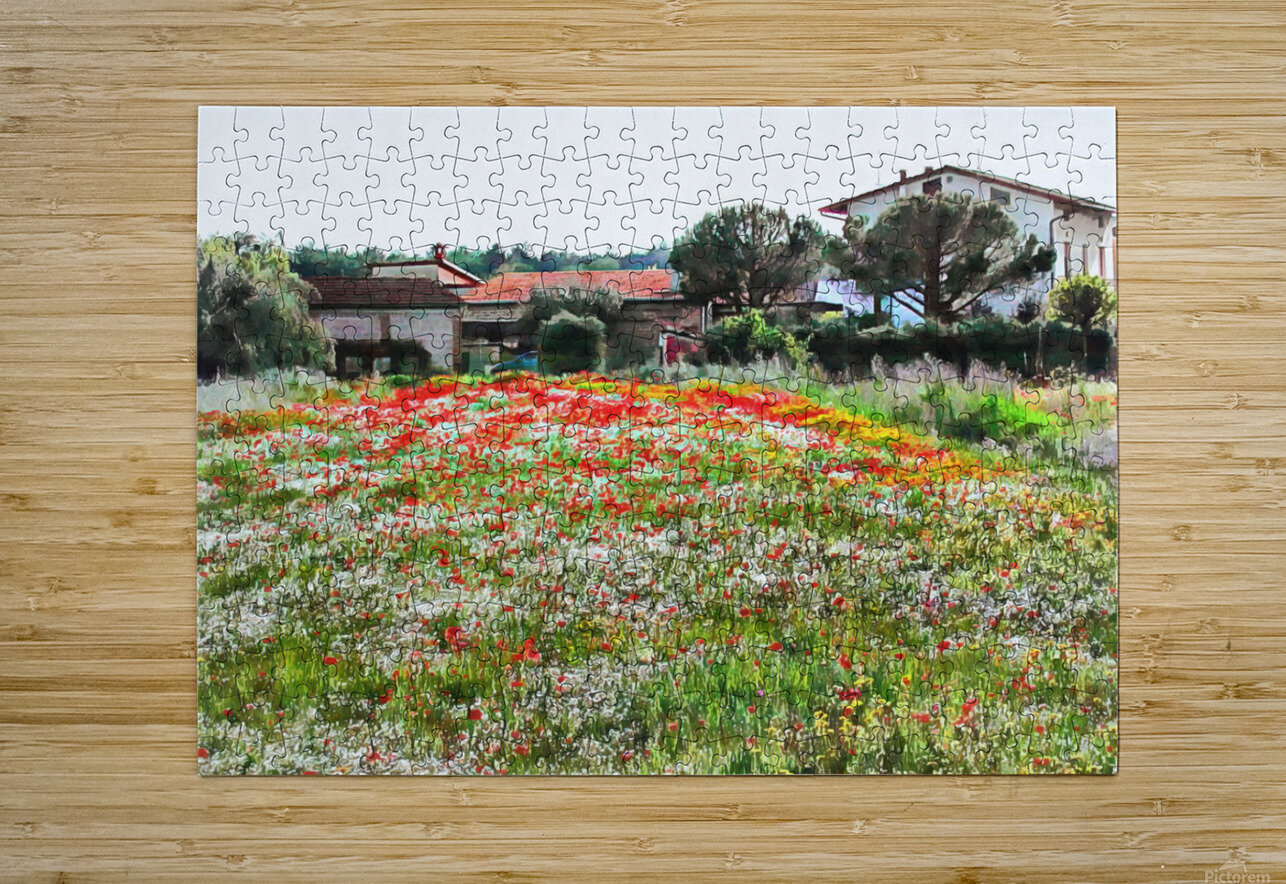 Old Farm House With Poppies  HD Metal print with Floating Frame on Back
