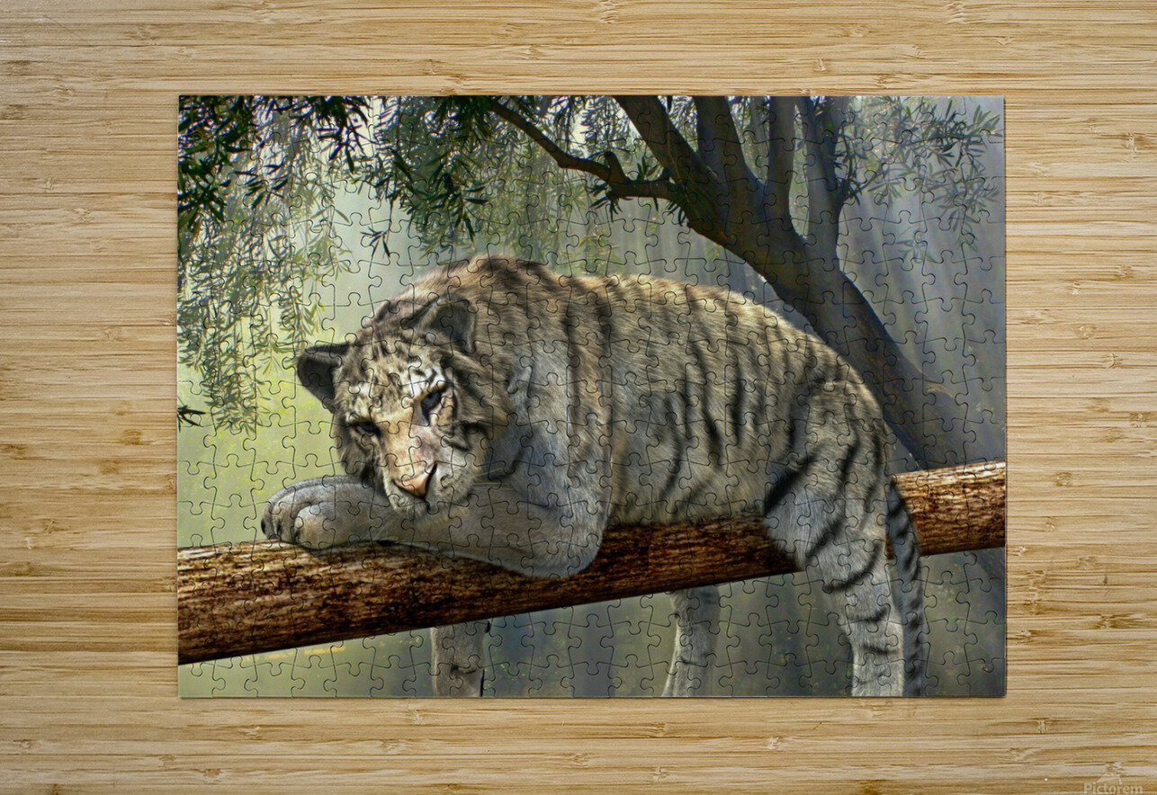 tiger animal jungle rainforest  HD Metal print with Floating Frame on Back