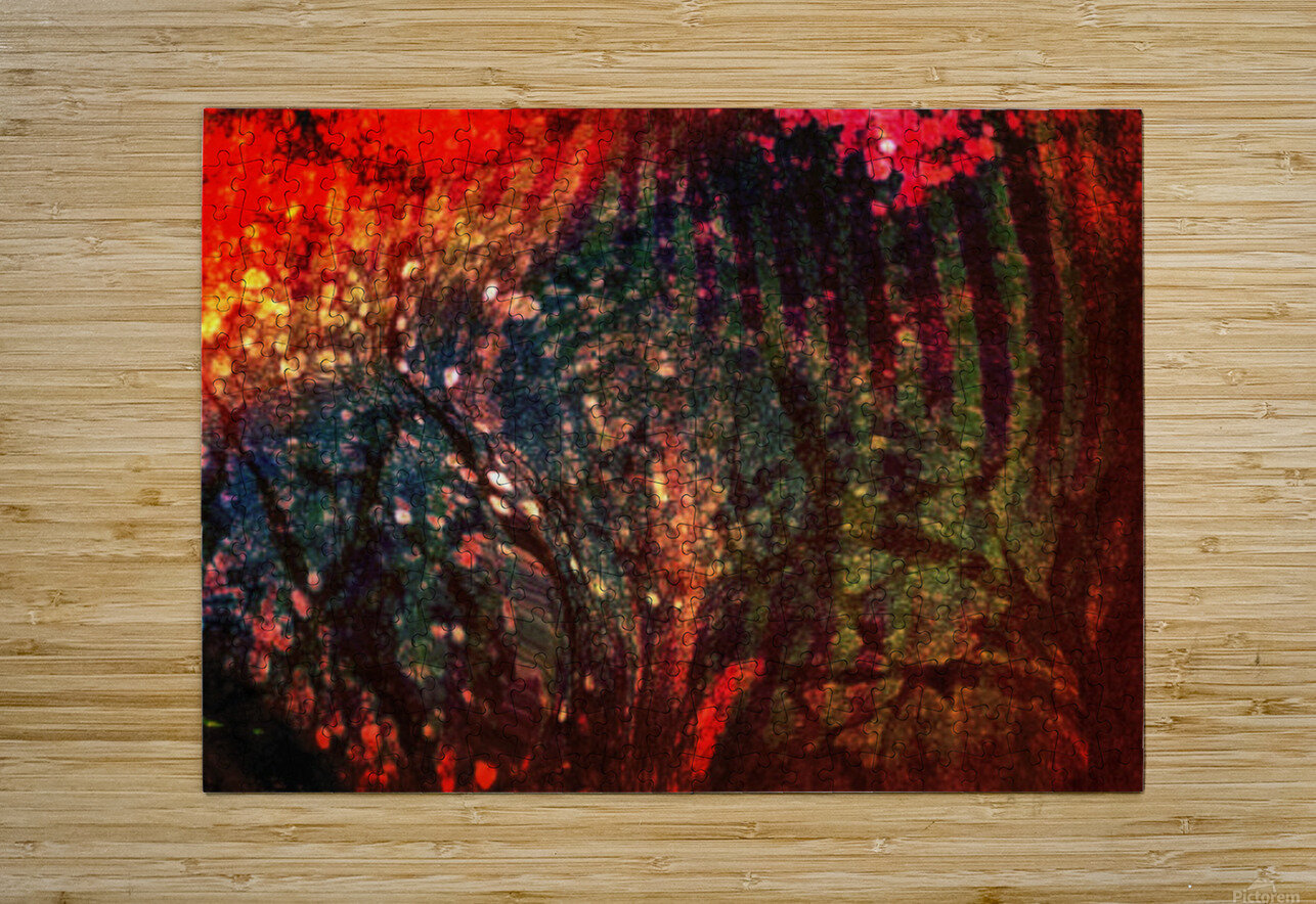 In The Tree  HD Metal print with Floating Frame on Back