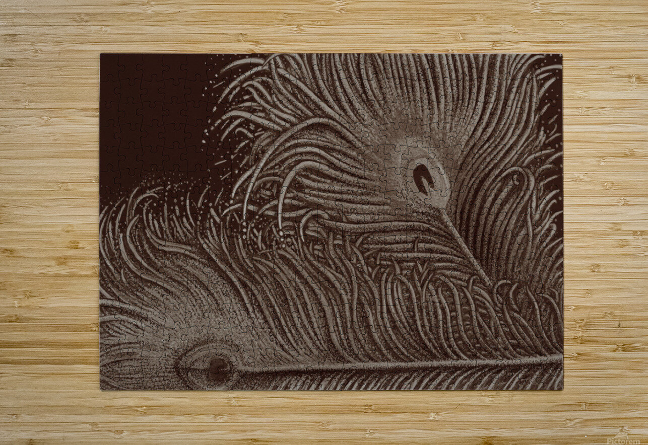 Full Bloom Sepia  HD Metal print with Floating Frame on Back