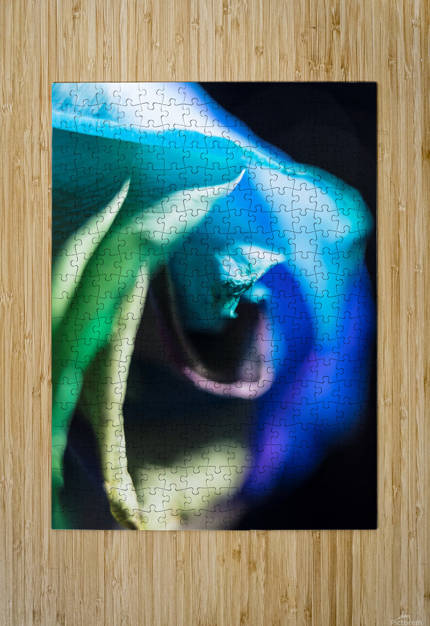 A bit of blue  HD Metal print with Floating Frame on Back