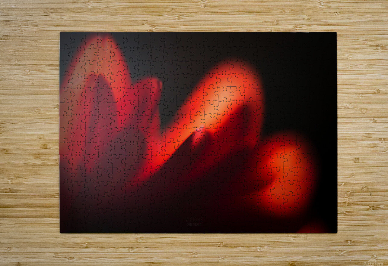Red Rose  HD Metal print with Floating Frame on Back