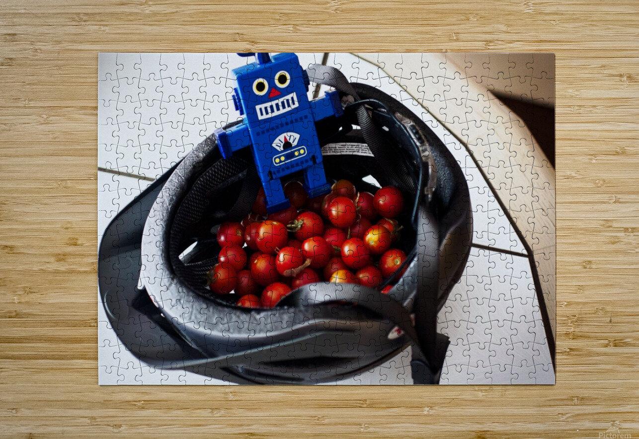 Robot Bike Helmet Tomatoes  HD Metal print with Floating Frame on Back