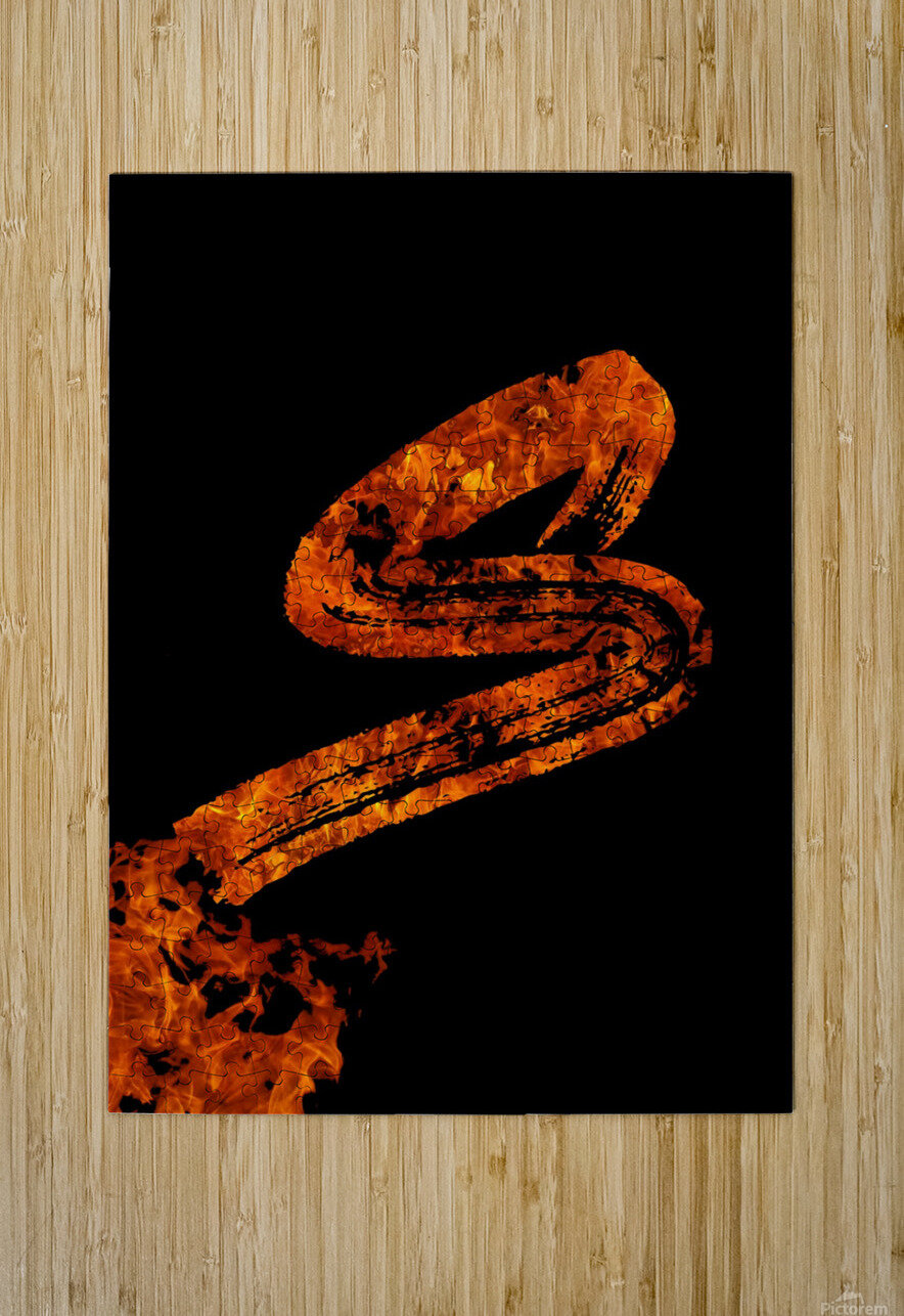 Burning on Fire Letter S  HD Metal print with Floating Frame on Back