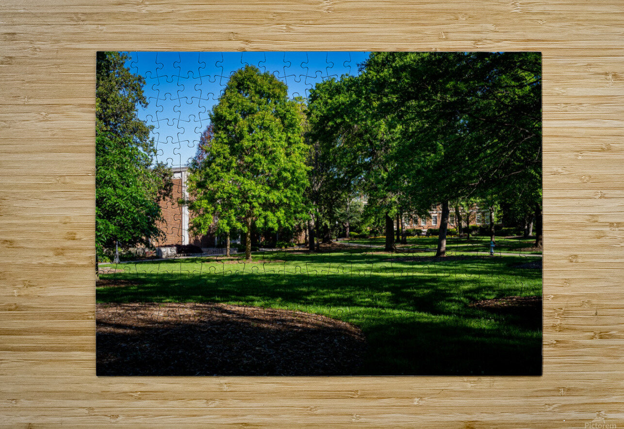University of Georgia   Athens GA 06328  HD Metal print with Floating Frame on Back