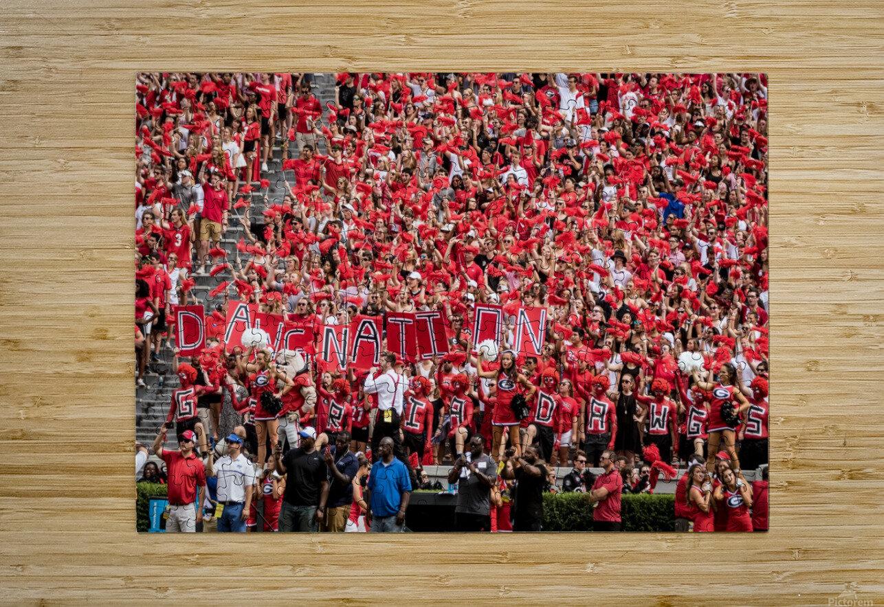 University of Georgia Football   Athens GA 3137  HD Metal print with Floating Frame on Back