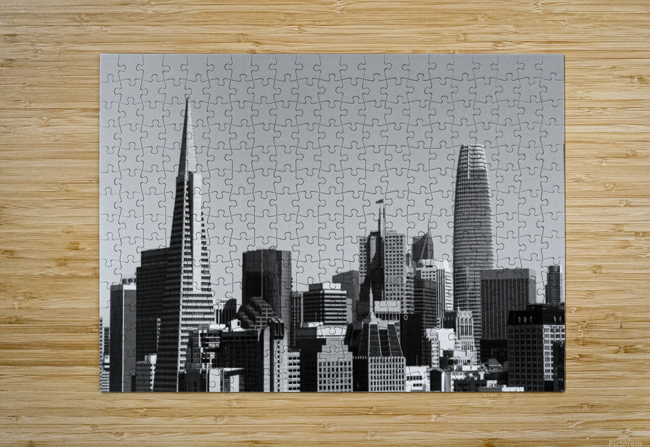 Black and White San Francisco Skyline  HD Metal print with Floating Frame on Back
