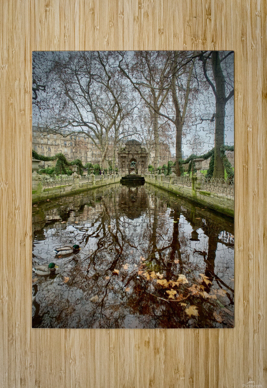 Medicis 2   1  HD Metal print with Floating Frame on Back