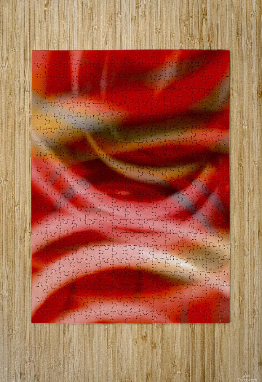 Rhythms of Samba  HD Metal print with Floating Frame on Back