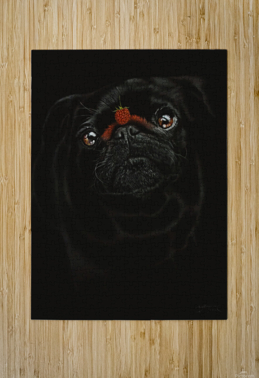 RASPBERRY PUG_COLOR PENCIL_51X69.30  HD Metal print with Floating Frame on Back