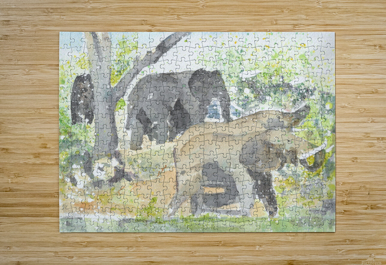 African Elephants 1  HD Metal print with Floating Frame on Back
