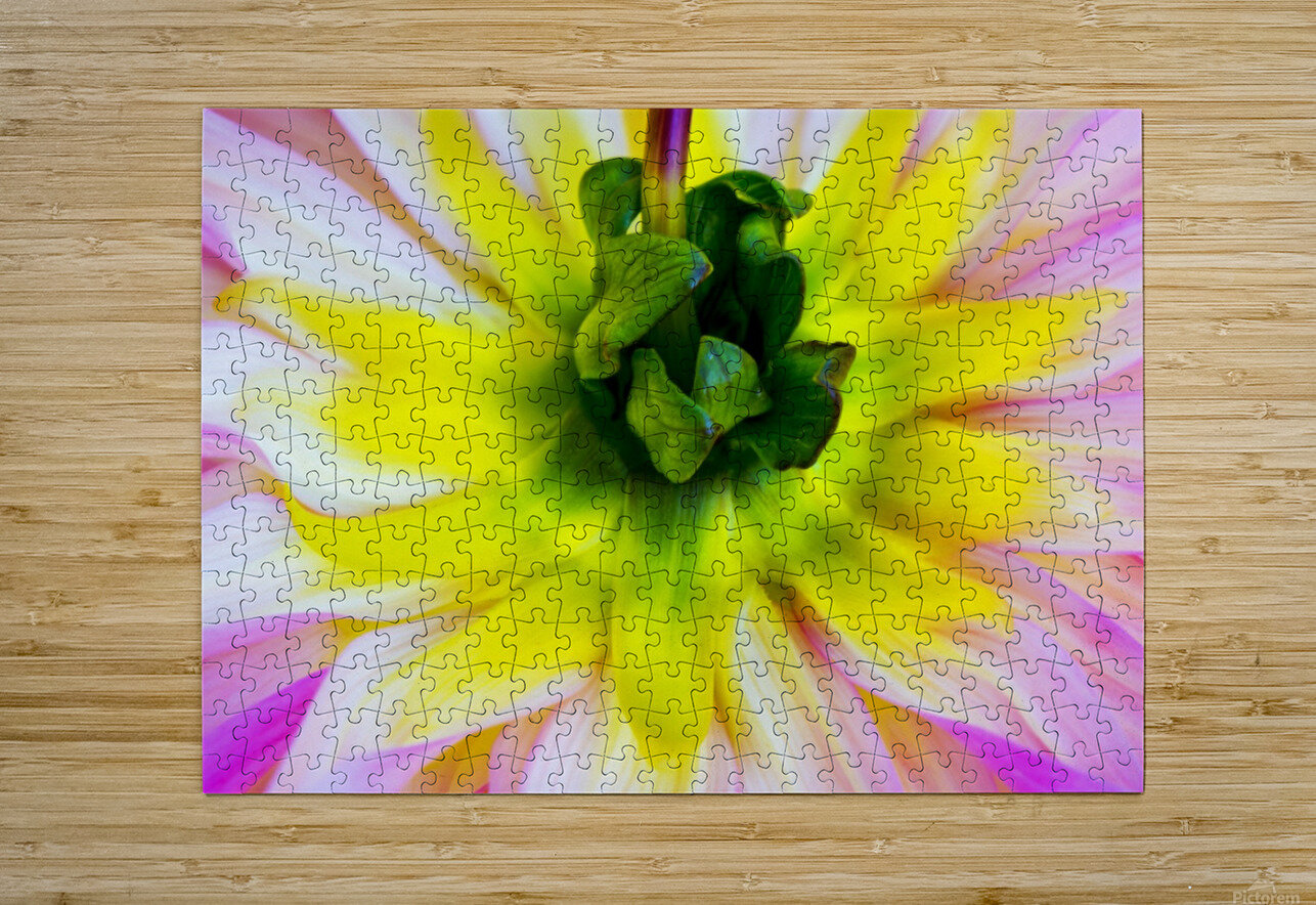 Pink Yellow Green   HD Metal print with Floating Frame on Back