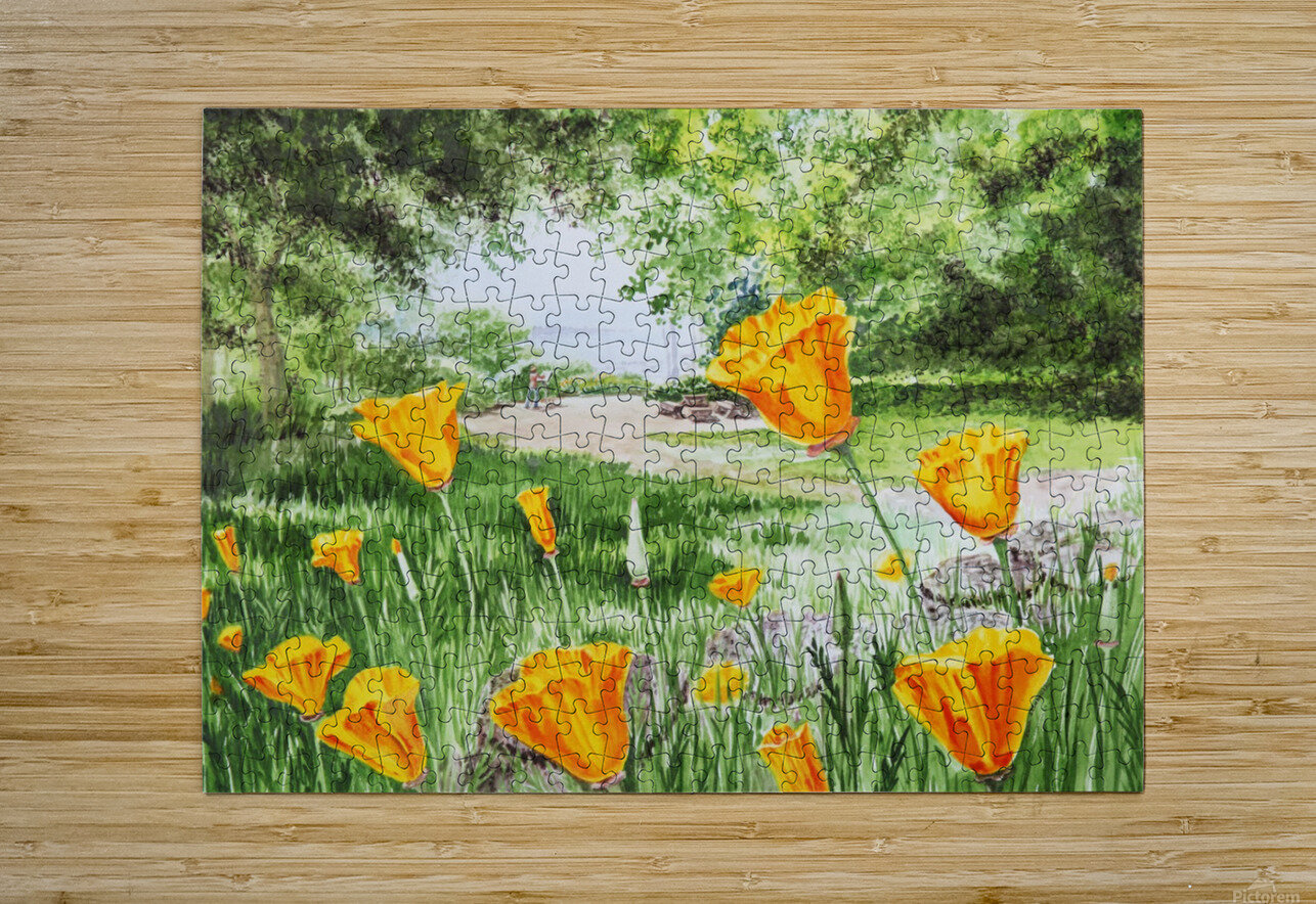 California Poppies  HD Metal print with Floating Frame on Back