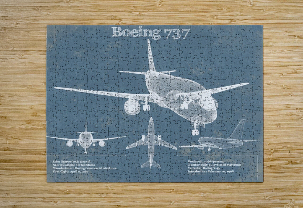 737  HD Metal print with Floating Frame on Back