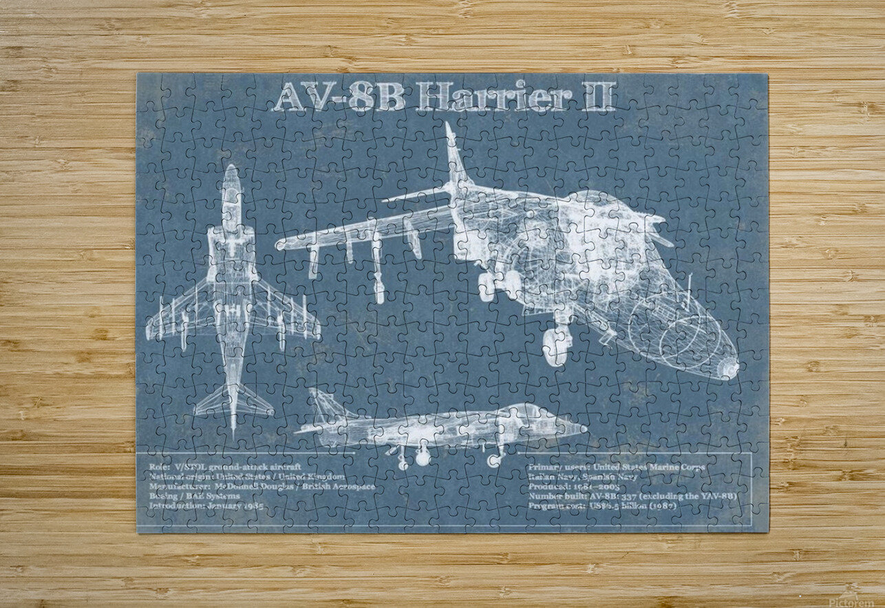 harrierII  HD Metal print with Floating Frame on Back