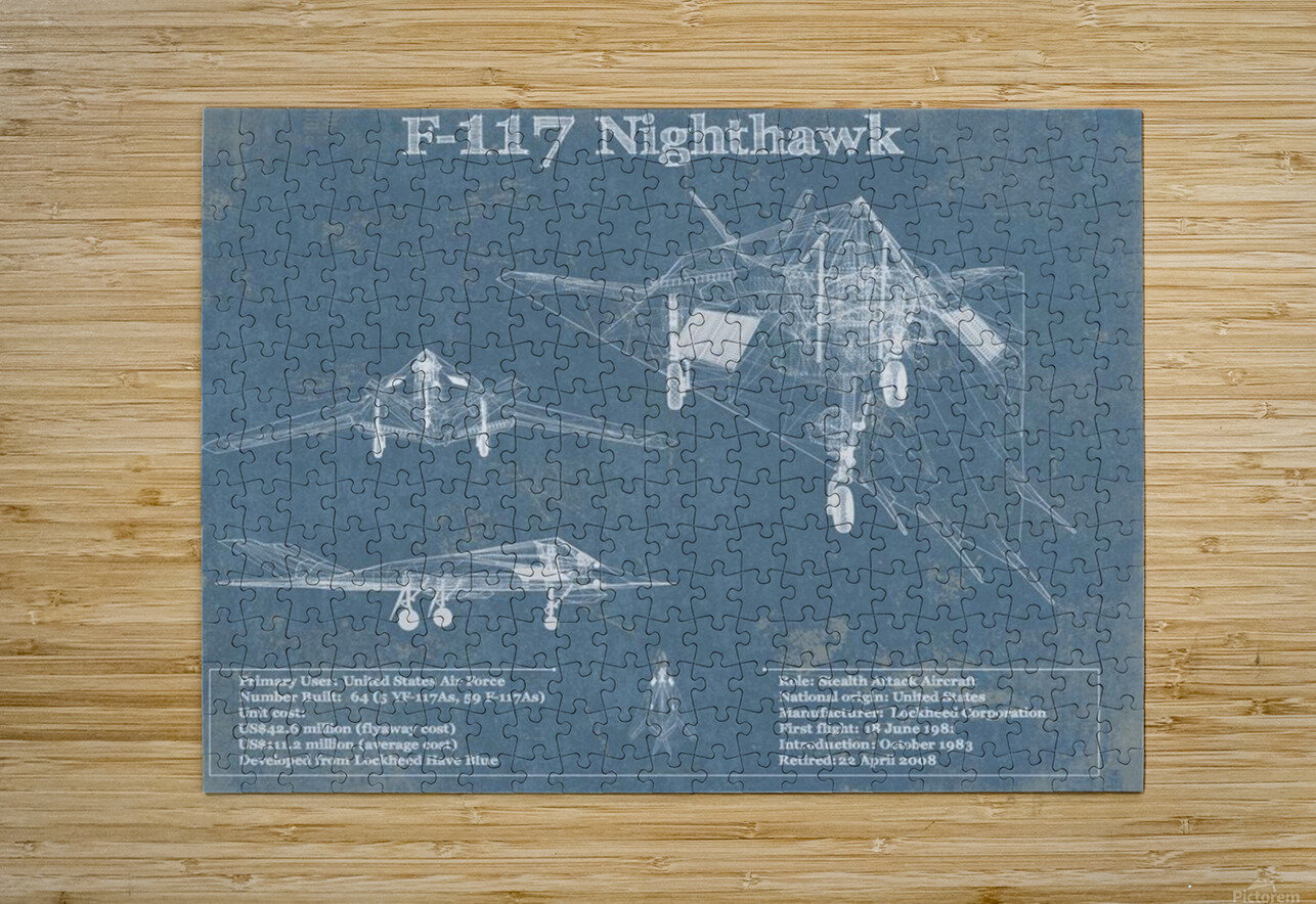 nighthawk_1601185188.2092  HD Metal print with Floating Frame on Back