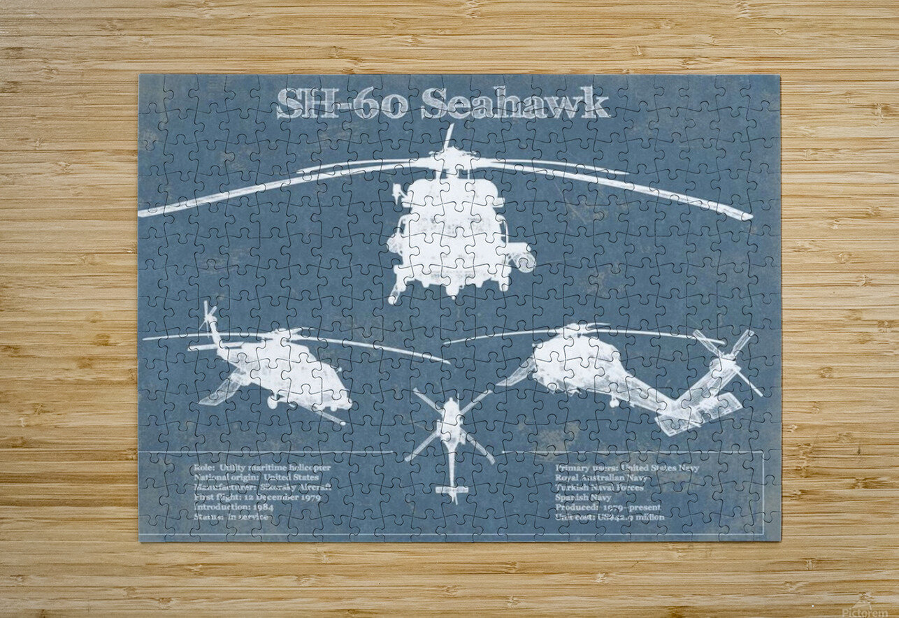 seahawk  HD Metal print with Floating Frame on Back