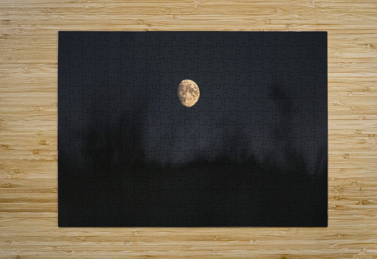 The moon  HD Metal print with Floating Frame on Back