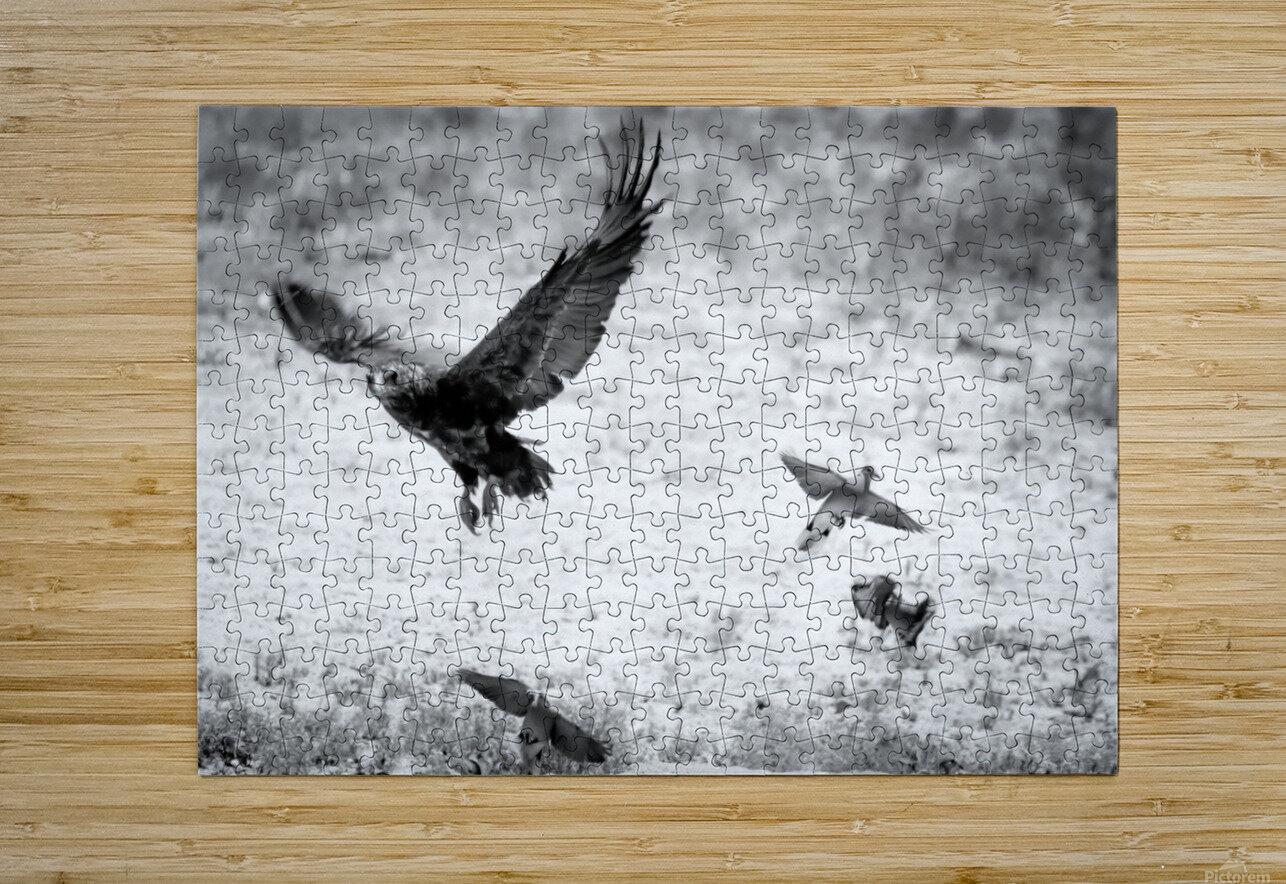 AdriaanPrinsloo 7140  HD Metal print with Floating Frame on Back