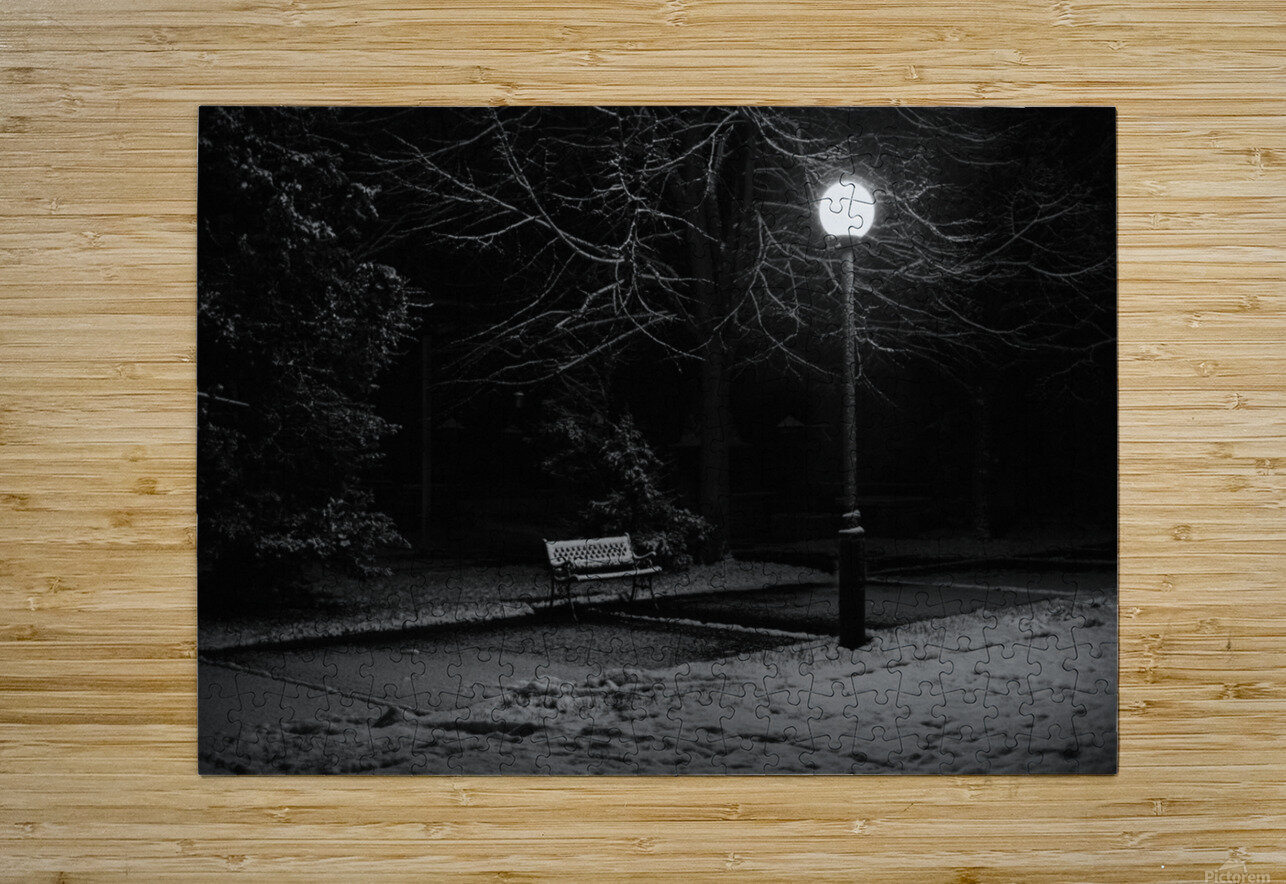 Winter night  HD Metal print with Floating Frame on Back