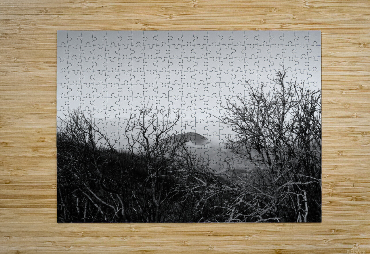 California Clouds through Mountain Brush in B&W  HD Metal print with Floating Frame on Back