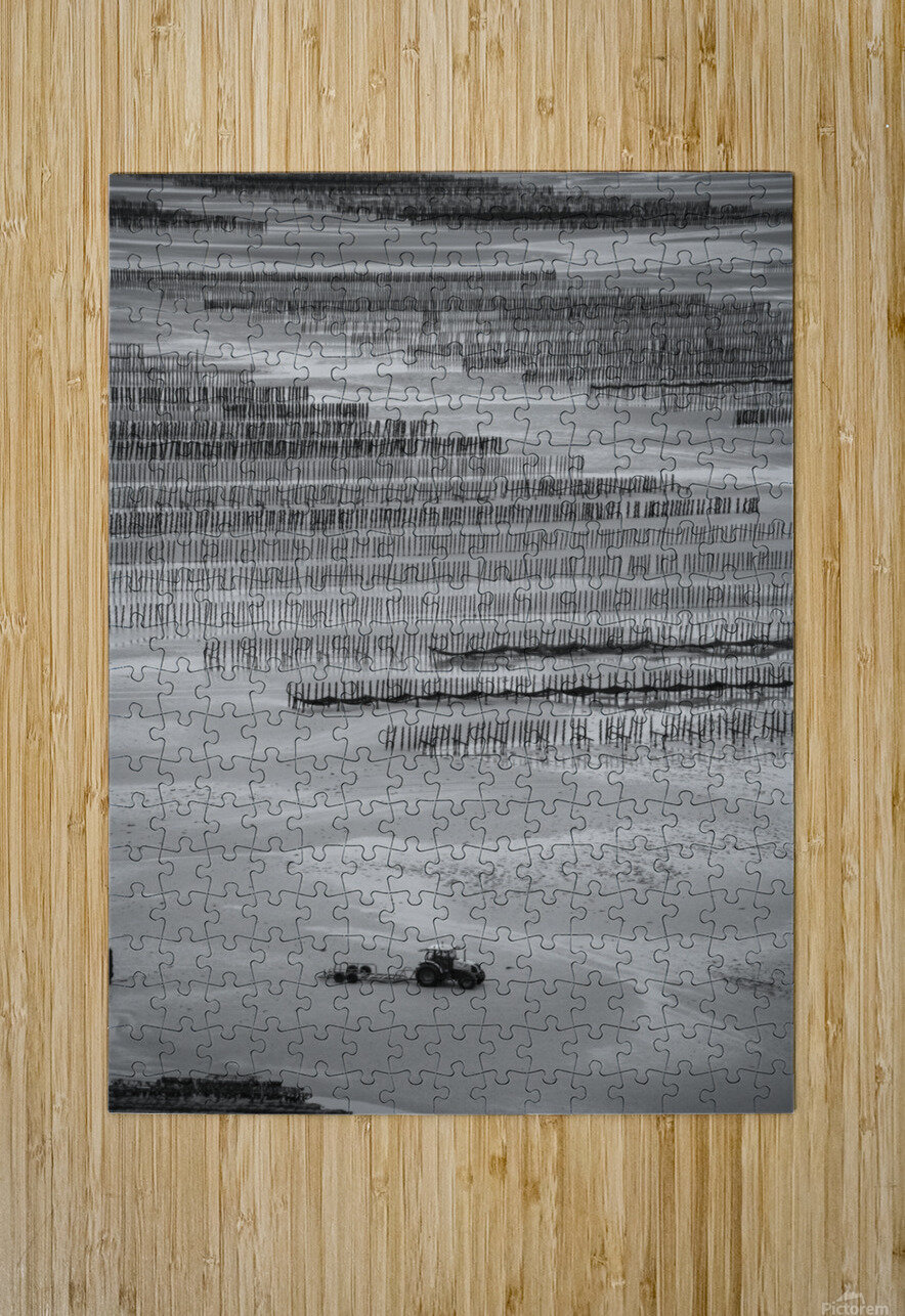Cancale  HD Metal print with Floating Frame on Back