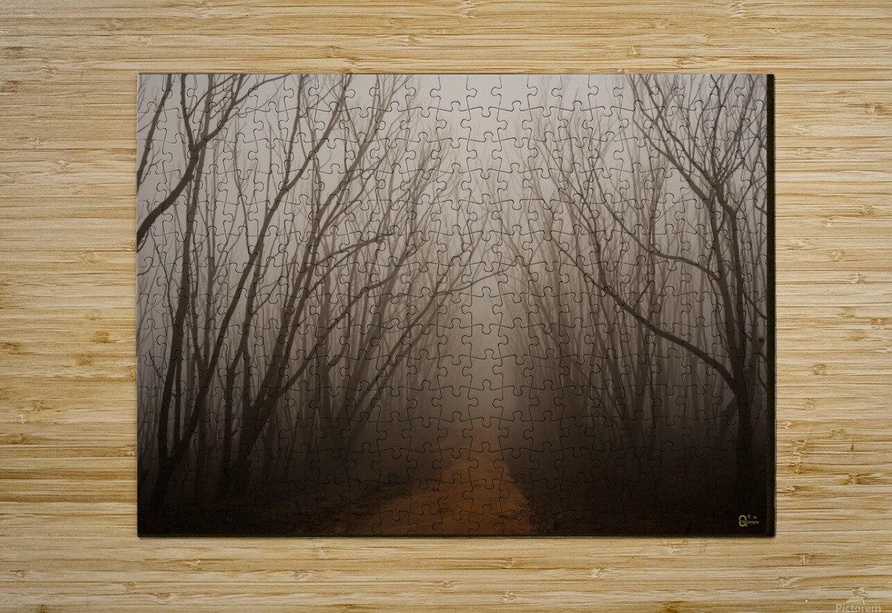after the fire  HD Metal print with Floating Frame on Back