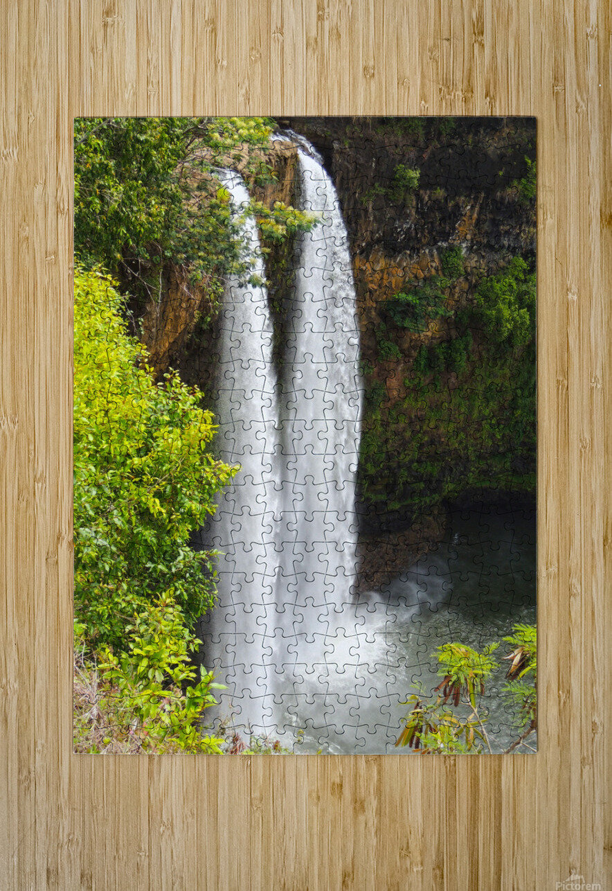 Wild Kauai - 2016 Gallery Artwork of the Year - Portrait-Natural  HD Metal print with Floating Frame on Back