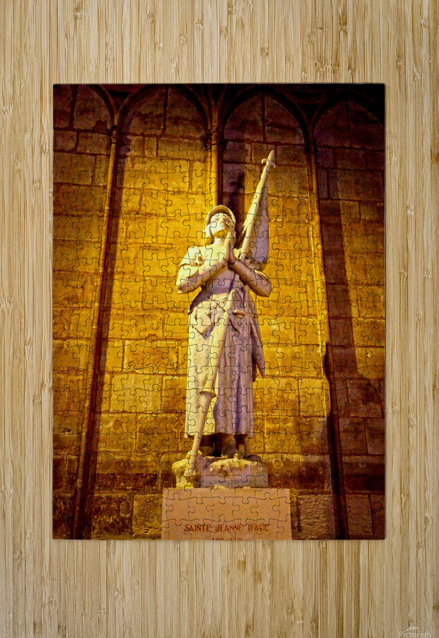 Jeanne d Arc and Saint Croix Cathedral at Orleans   France 4 of 7  HD Metal print with Floating Frame on Back