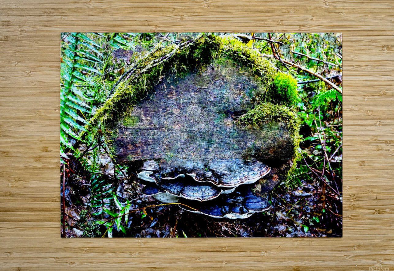 Tiny World 7 of 8  HD Metal print with Floating Frame on Back