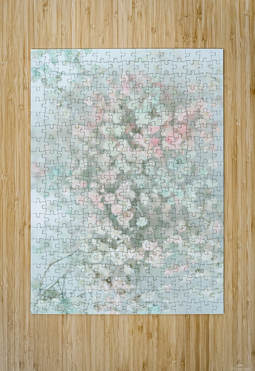 Daltana Pastel Floral Bina  HD Metal print with Floating Frame on Back