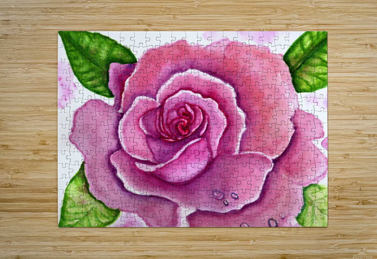 Magnificent Rose  HD Metal print with Floating Frame on Back