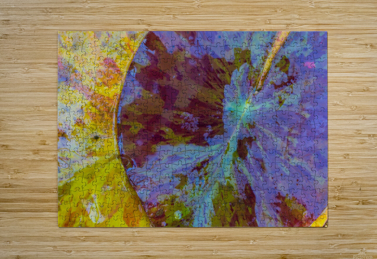 Colors Of Nature ap 2038  HD Metal print with Floating Frame on Back