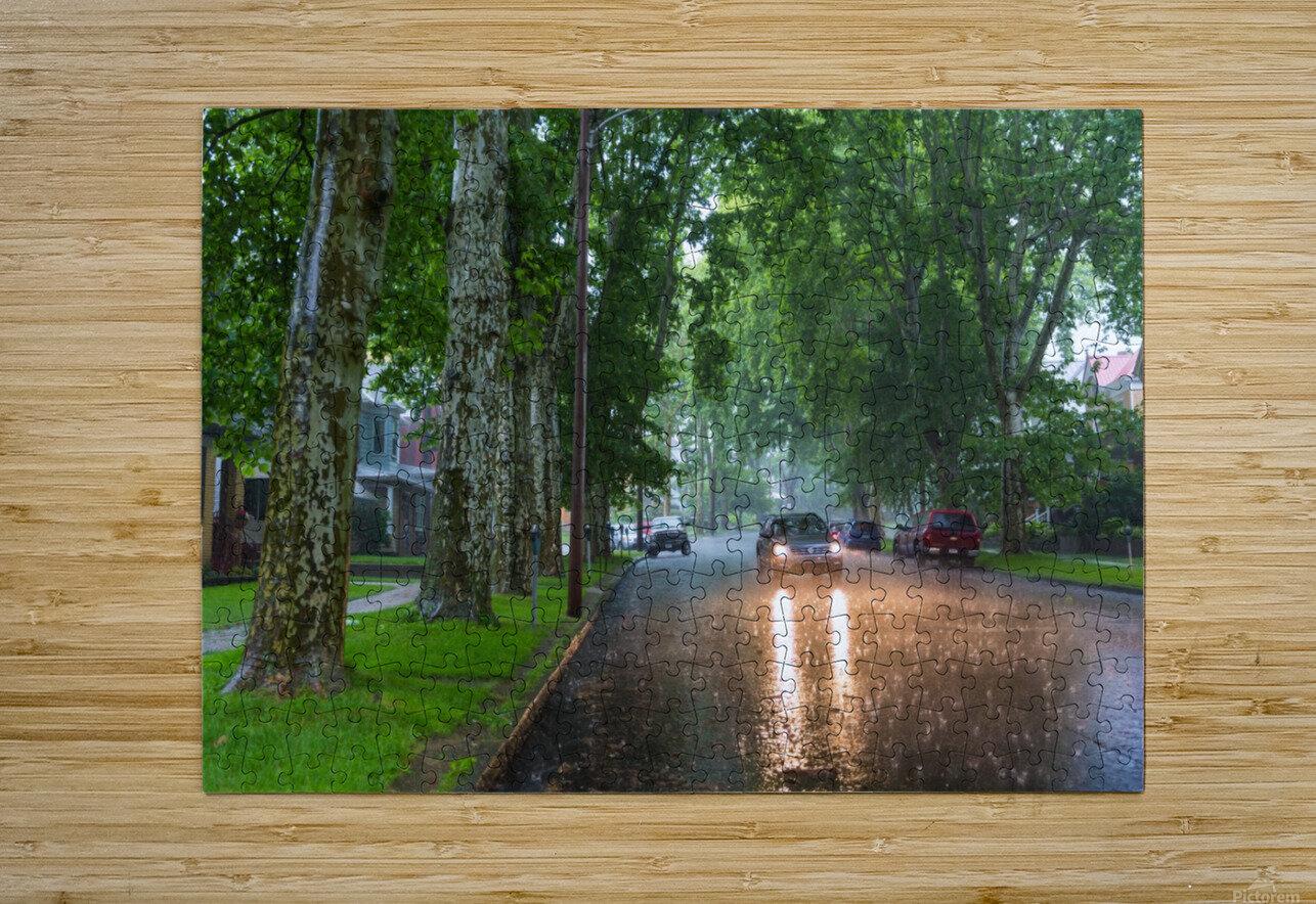 Summer Rain ap 2892  HD Metal print with Floating Frame on Back