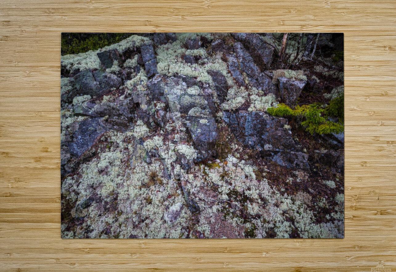 Purple Rocks ap 2289  HD Metal print with Floating Frame on Back