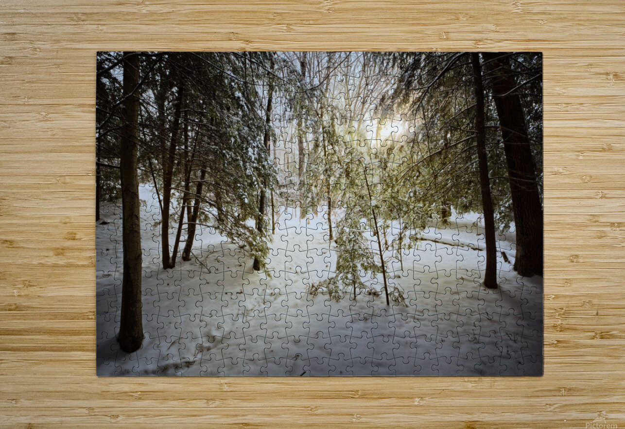 Sunlight ap 2731  HD Metal print with Floating Frame on Back