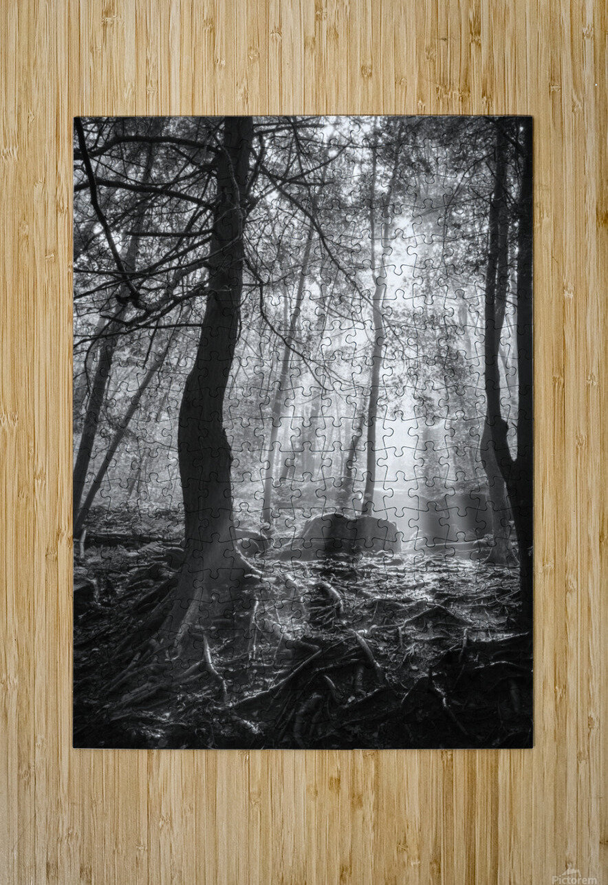 Sunlight ap 1928 B&W  HD Metal print with Floating Frame on Back