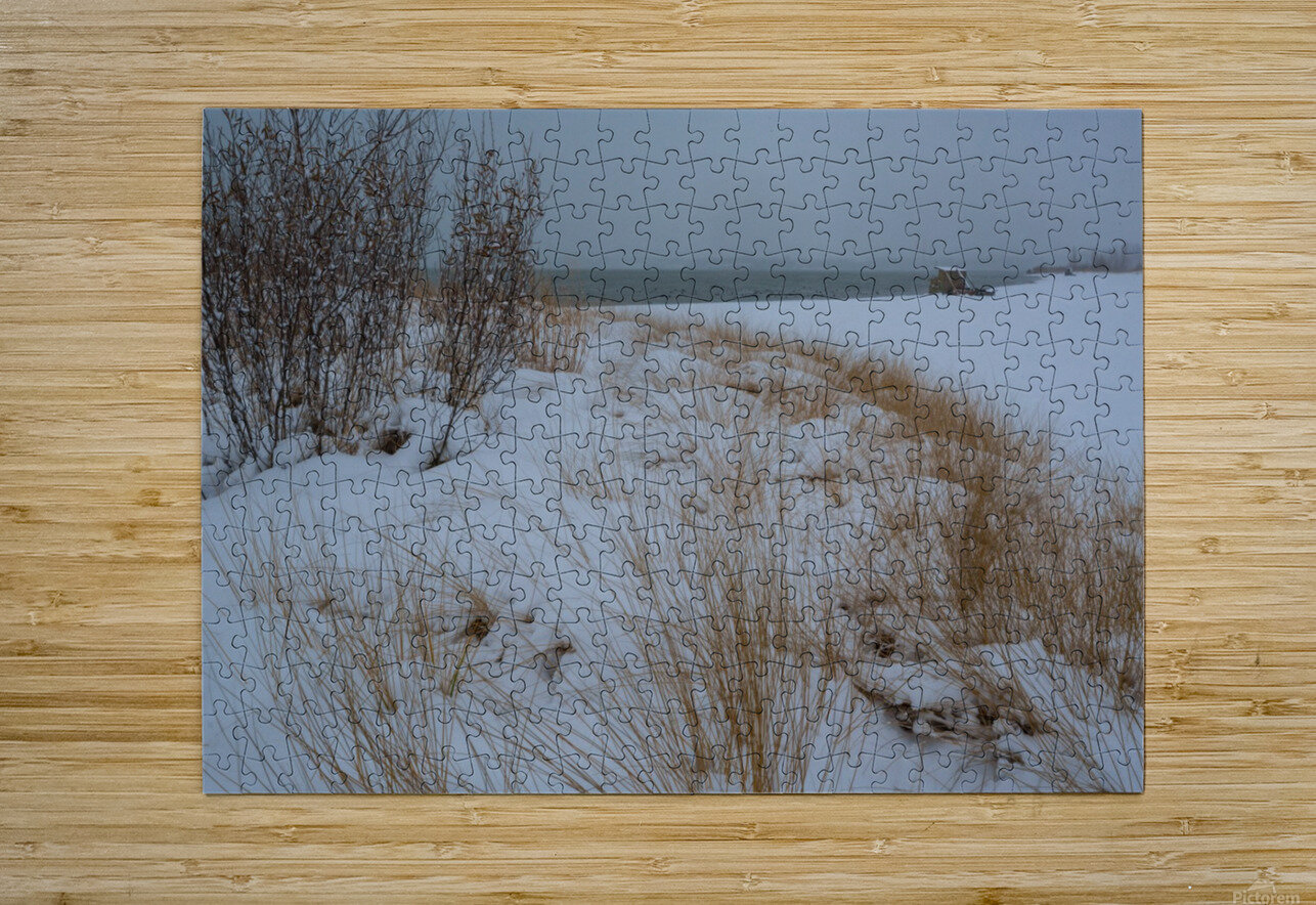 Duck Blind ap 2712  HD Metal print with Floating Frame on Back